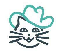 продвижение бизнеса - коты в шляпах
